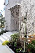 建売住宅 ミサワプラザ花園南B棟 新潟県長岡市土合町 JR信越本線長岡駅 3,740万円