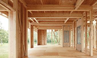 MJ Woodの構造体